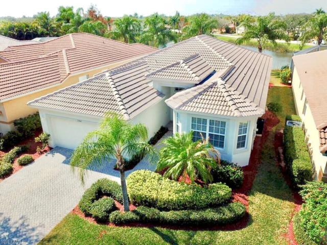 13945 Village Creek Dr, Fort Myers, FL 33908 (MLS #219011995) :: The Naples Beach And Homes Team/MVP Realty