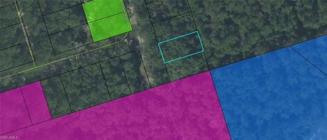 Iroquois Rd, CRAWFORDVILLE, FL 32327 (MLS #219012997) :: RE/MAX DREAM