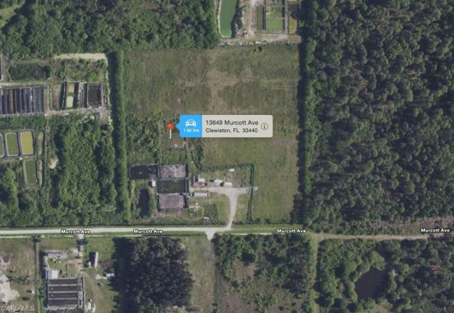 13649 Murcott Ave, Clewiston, FL 33440 (MLS #219013001) :: RE/MAX Realty Team