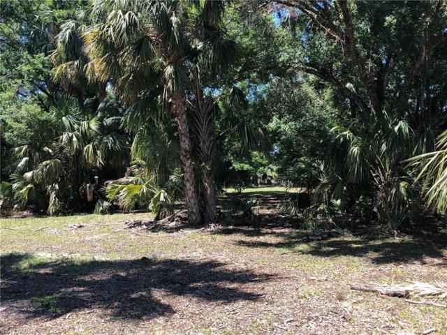 43451 Farabee Rd, Punta Gorda, FL 33982 (MLS #219013764) :: RE/MAX Realty Group