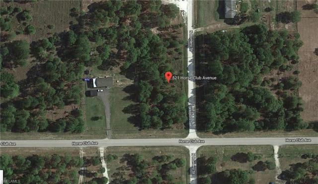 521 Horse Club Ave, Clewiston, FL 33440 (MLS #219014619) :: RE/MAX Realty Team