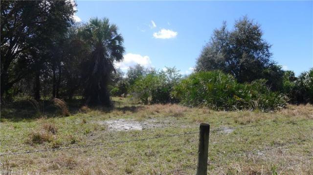 23160 N River Rd, Alva, FL 33920 (MLS #219014678) :: RE/MAX Realty Team