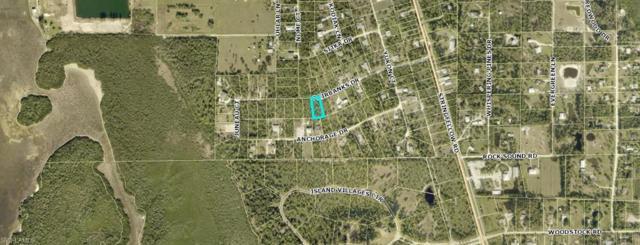 5271 Fairbanks Dr, St. James City, FL 33956 (MLS #219016022) :: Kris Asquith's Diamond Coastal Group