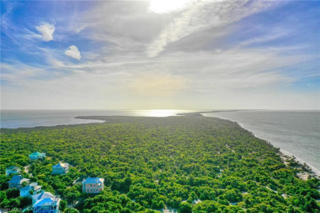 4491 Panama Shell Dr, Upper Captiva, FL 33924 (MLS #219016596) :: Royal Shell Real Estate