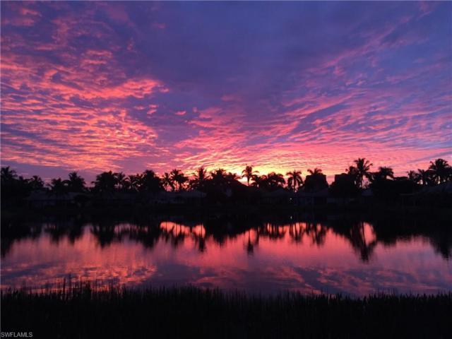 14406 Reflection Lakes Dr, Fort Myers, FL 33907 (MLS #219016598) :: John R Wood Properties