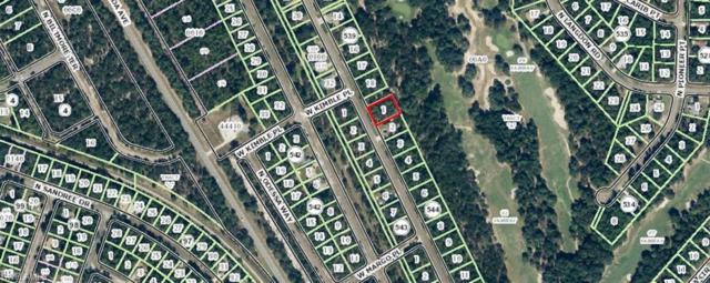 9967 N Sherman Dr, Citrus Springs, FL 34434 (MLS #219018199) :: Clausen Properties, Inc.