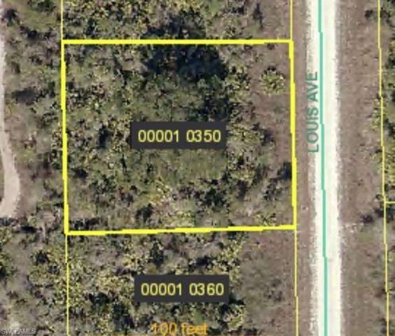 2801 & 2803 Louis Ave, Alva, FL 33920 (MLS #219020018) :: John R Wood Properties