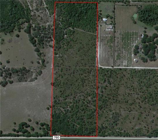 SW Co Road 760, Arcadia, FL 34266 (MLS #219020396) :: Clausen Properties, Inc.