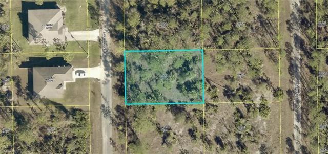 2120 Mcarthur Ave, Alva, FL 33920 (MLS #219021945) :: John R Wood Properties