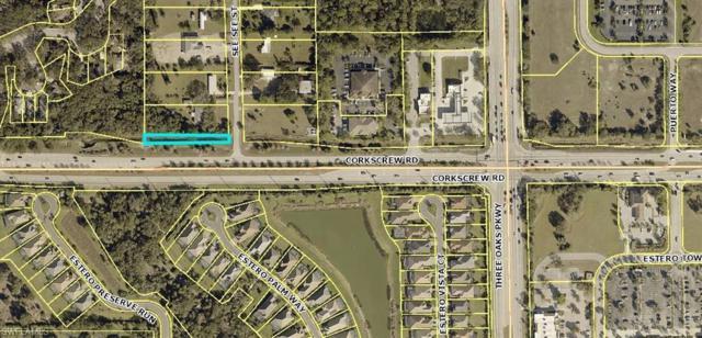 21226 See See Street, Estero, FL 33928 (MLS #219027164) :: Clausen Properties, Inc.