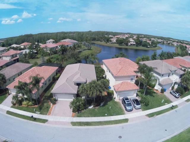 11344 Pond Cypress St, Fort Myers, FL 33913 (MLS #219031214) :: #1 Real Estate Services