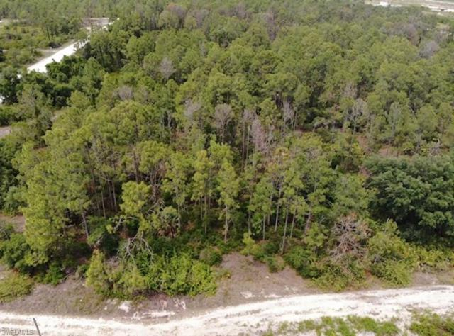 7654 18th Pl, Labelle, FL 33935 (MLS #219031651) :: Sand Dollar Group