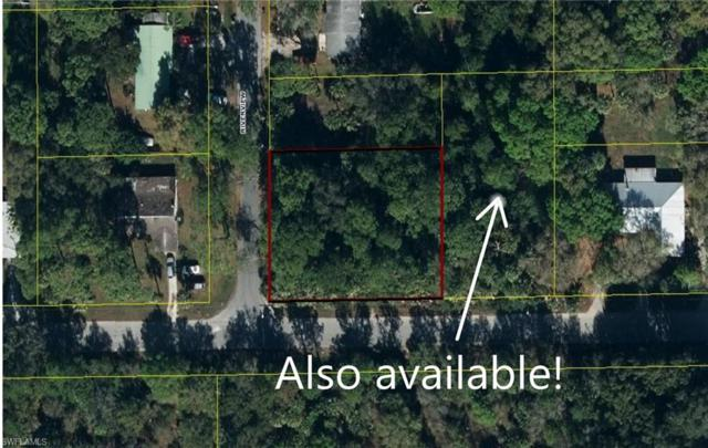 S Riverview Street, Labelle, FL 33935 (#219032674) :: The Dellatorè Real Estate Group