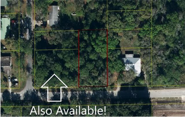 E Lincoln Avenue, Labelle, FL 33935 (#219032689) :: The Dellatorè Real Estate Group