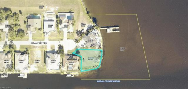 2378 Coral Point Dr, Cape Coral, FL 33990 (MLS #219032916) :: Sand Dollar Group