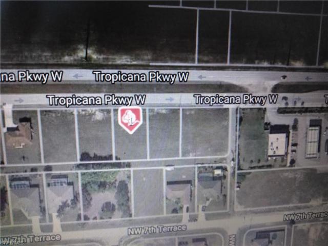 1624 Tropicana Pky W, Cape Coral, FL 33993 (MLS #219037628) :: Palm Paradise Real Estate