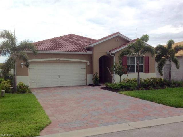 3313 Apple Blossom Dr, Alva, FL 33920 (MLS #219037789) :: Clausen Properties, Inc.