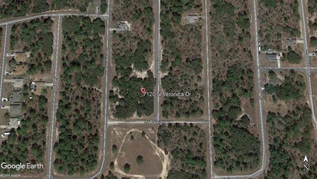 7120 N Veronica Dr, Citrus Springs, FL 34433 (MLS #219040707) :: Sand Dollar Group