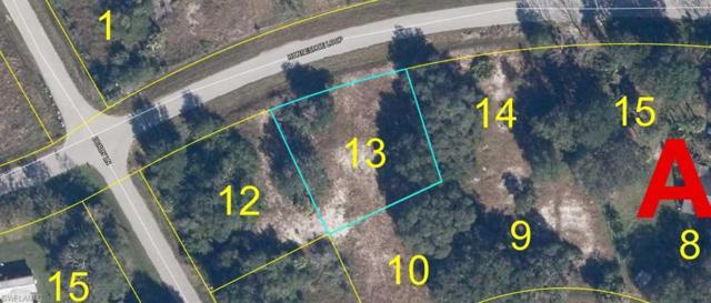 1117 Horseshoe Loop, Moore Haven, FL 33471 (MLS #219041726) :: Sand Dollar Group