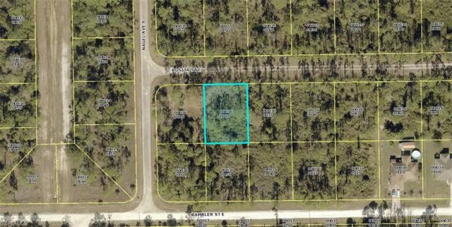1136 Rosita St E, Lehigh Acres, FL 33974 (MLS #219042100) :: Clausen Properties, Inc.