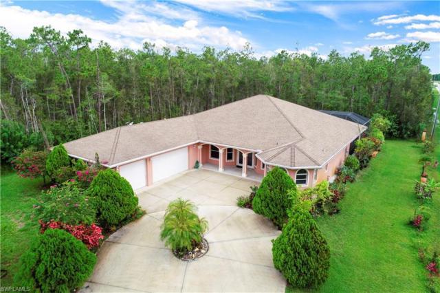 10711 Strike Ln, Bonita Springs, FL 34135 (MLS #219042404) :: Sand Dollar Group
