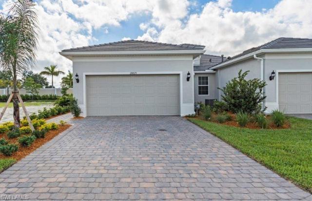 20025 Parrot Key Ct, Estero, FL 33928 (MLS #219042436) :: John R Wood Properties