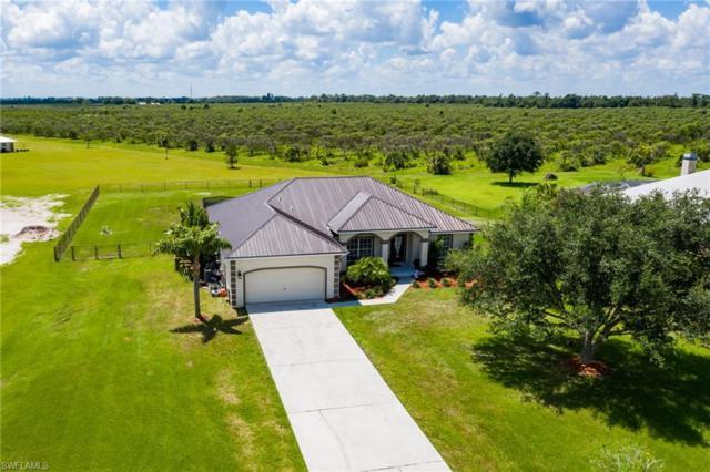 5273 River Blossom Ln, FORT DENAUD, FL 33935 (MLS #219042722) :: Clausen Properties, Inc.
