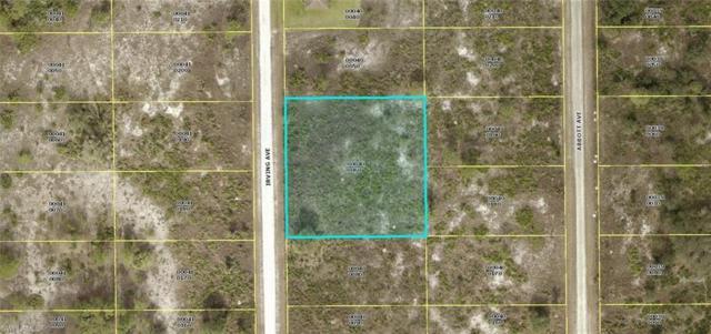 1112 Irving Ave, Lehigh Acres, FL 33972 (MLS #219043020) :: Clausen Properties, Inc.