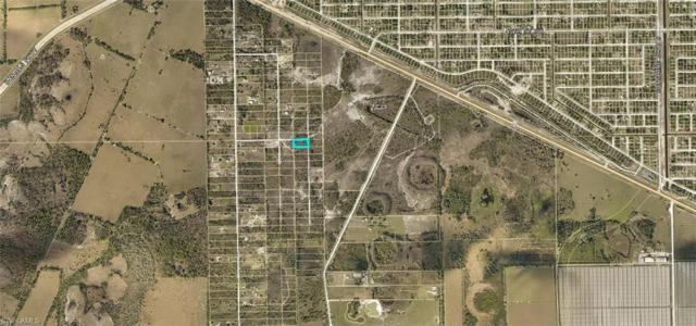 Gooden Grove Rd, Fort Myers, FL 33913 (MLS #219043185) :: RE/MAX Radiance