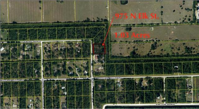 975 N Elk St, Clewiston, FL 33440 (MLS #219043235) :: John R Wood Properties