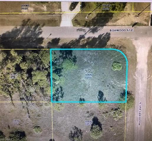 634 Mulberry Ave S, Lehigh Acres, FL 33974 (#219043399) :: Southwest Florida R.E. Group LLC
