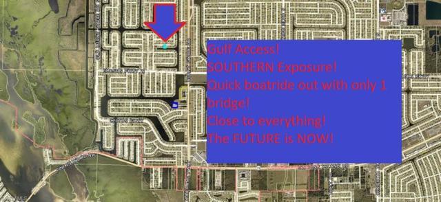 3320 NW 2nd Ter, Cape Coral, FL 33993 (MLS #219044350) :: John R Wood Properties