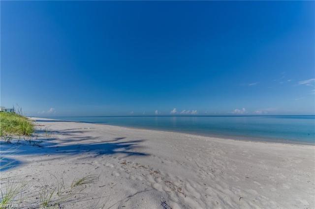 5861 Bur Oaks Ln, Naples, FL 34119 (MLS #219045522) :: Sand Dollar Group