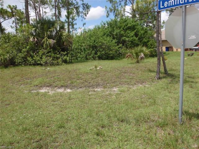 1040 Binkley St E, Lehigh Acres, FL 33974 (MLS #219046557) :: The Naples Beach And Homes Team/MVP Realty