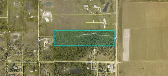 19621 Babcock Ranch Rd, North Fort Myers, FL 33917 (MLS #219046769) :: Sand Dollar Group