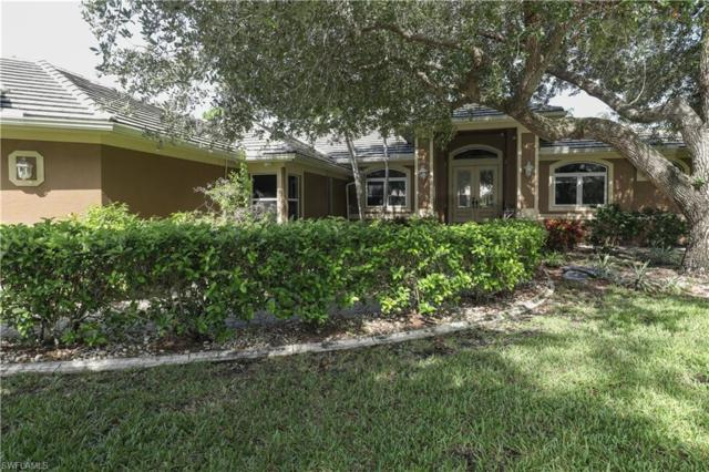 12921 Treeline Ct, North Fort Myers, FL 33903 (#219048020) :: Southwest Florida R.E. Group LLC