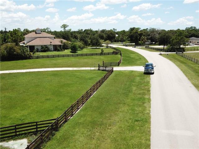 18621 River Estates Ln, Alva, FL 33920 (MLS #219048536) :: Sand Dollar Group