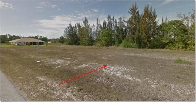 1423 NW 24 Trce, Cape Coral, FL 33993 (MLS #219049086) :: Clausen Properties, Inc.