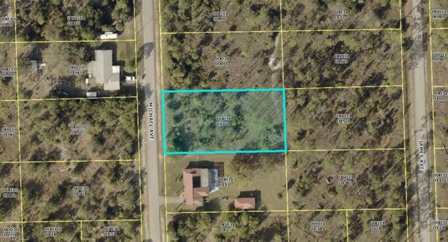 1004 Michael Ave, Lehigh Acres, FL 33936 (MLS #219049880) :: Palm Paradise Real Estate