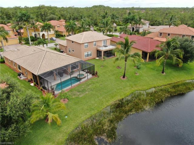 9171 River Otter Dr, Fort Myers, FL 33912 (#219049937) :: The Dellatorè Real Estate Group