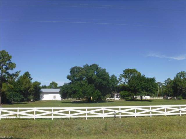 4550 Hendry Isles Blvd, Clewiston, FL 33440 (MLS #219050942) :: Sand Dollar Group