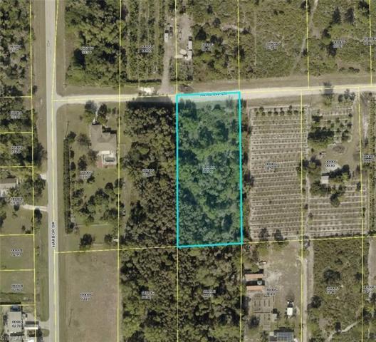 6451 Meadow Ln, Bokeelia, FL 33922 (MLS #219052895) :: Sand Dollar Group