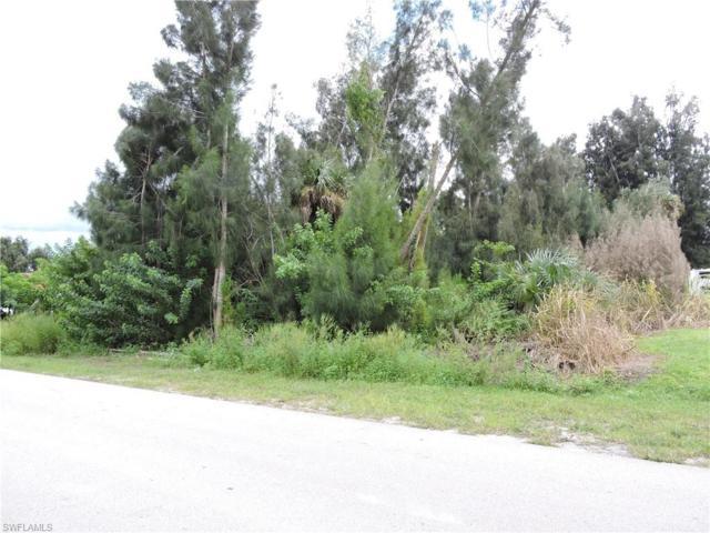14060 Barkwood St, Fort Myers, FL 33905 (MLS #219052996) :: Sand Dollar Group