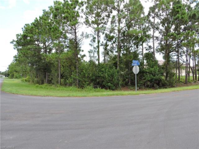 14171 Callan St, Fort Myers, FL 33905 (MLS #219053429) :: Sand Dollar Group