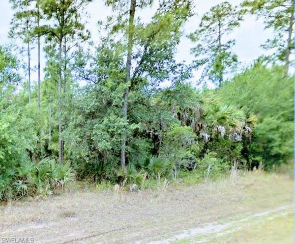 312 Hunting Club Ave, Clewiston, FL 33440 (MLS #219053515) :: Sand Dollar Group
