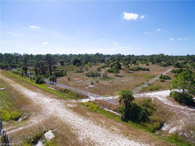 830 S Live Oak St, Clewiston, FL 33440 (MLS #219054371) :: Sand Dollar Group
