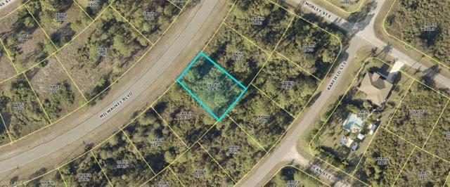 1130 Milwaukee Blvd, Lehigh Acres, FL 33974 (MLS #219054498) :: Kris Asquith's Diamond Coastal Group