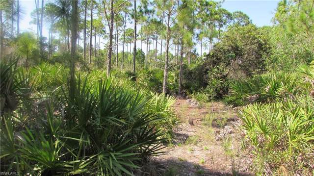 15359 Bimini Way, Bokeelia, FL 33922 (MLS #219058597) :: RE/MAX Realty Team