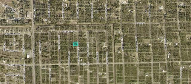 2115 Roosevelt Ave, Alva, FL 33920 (MLS #219060888) :: Clausen Properties, Inc.