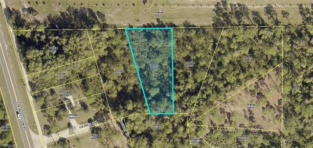 5054 Haines Ct, St. James City, FL 33956 (MLS #219061006) :: The Naples Beach And Homes Team/MVP Realty
